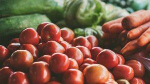 unternehmer-tomaten